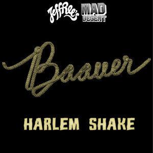 因為你聽過 Harlem Shake