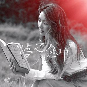 薛凱琪夢之途中音樂紀2017