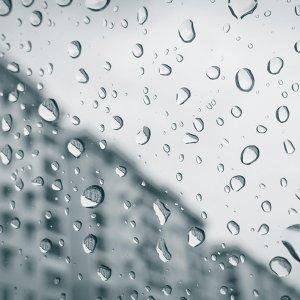 啊下雨了,有藉口可以偷懶囉!