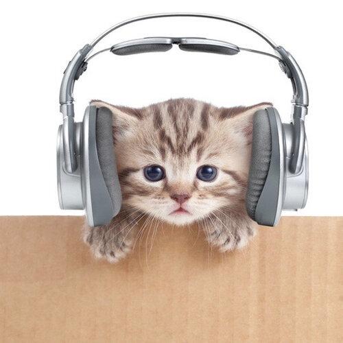 一個人不無聊 讓音樂陪你度過孤單時刻