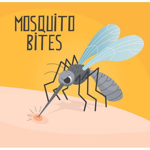 盛夏來襲 防蚊措施別忘記