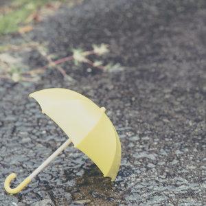 讓人發霉的梅雨季節