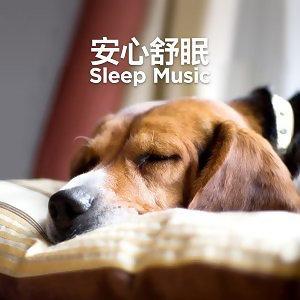 安心舒眠 Sleep Music (持續更新中)