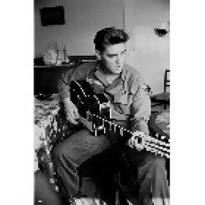 向貓王Elvis Presley致敬