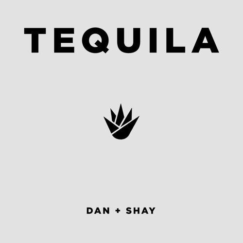 Dan + Shay Sorotan Lagu