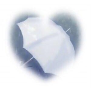 情語(上)_雨的旋律