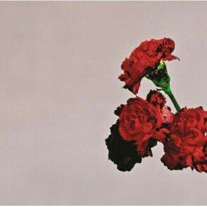 John Legend (約翰傳奇) - 歌曲點播排行榜
