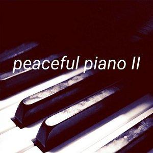 琴 靜 無 限 peaceful piano II