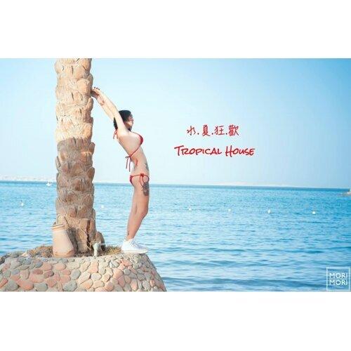 水夏狂歡必聽輕電音(Tropical House)