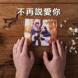 分手不再說愛你,電音訴說你的心 (2017.8.25 更新)