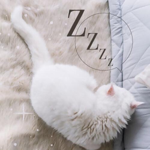 晚安晚安 輕輕入睡(不定期更新)