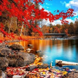 秋天即將來臨,又是多愁善感的季節