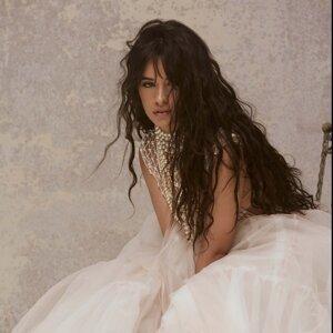 Camila Cabello Sorotan Lagu