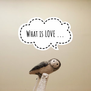 What is LOVE ...