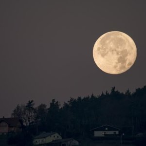 中秋賞月必備,最令人放鬆的黑樂