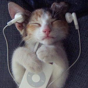 一個人也能夠擁有的音樂享受