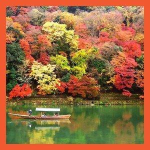 天涼好個秋:秋意濃