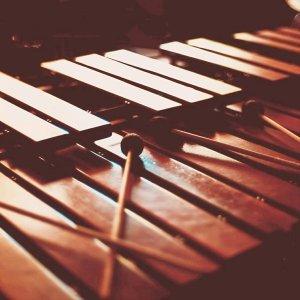 療癒人心的馬林巴木琴