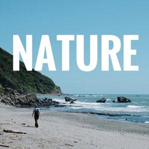 聽著舒服旋律,擁抱自然吧!(隨時更新)