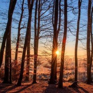 冬天來臨,讓柔柔的節奏溫暖妳