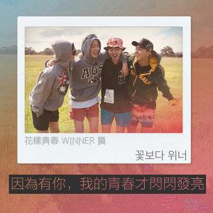 花漾青春WINNER配樂篇!因為我們在一起,所以變得閃閃動人了!