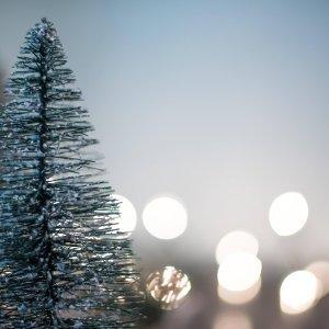 366日聽不膩LoVe-sOnG 12月号|冬季超暖心日系情歌