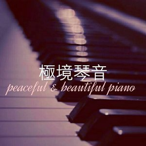極境琴音 peaceful & beautiful piano(8/4)更新