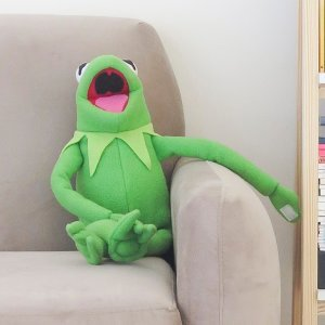 蛙蛙去哪兒?
