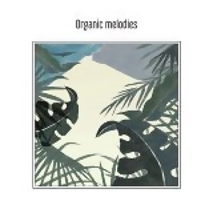 Puzzle Man - 有機的旋律們 (Organic melodies)