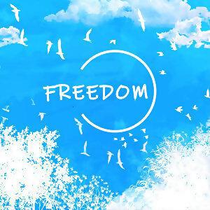 勇敢面對一切 自由的飛(12/23更新