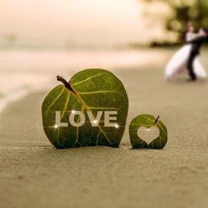 尋獲愛情!終於找到你 <3