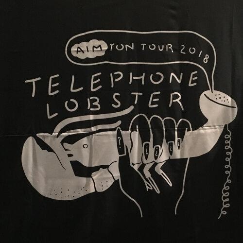 Aimyon 愛繆 Telephone Lobster 台北演唱會