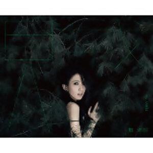 戴佩妮「贼」世界巡回演唱会歌单