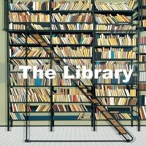 在圖書館陪你安靜一整天