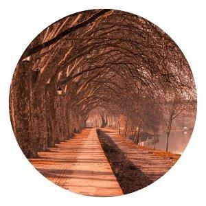 秋凹INDIE:秋天是個馳放的季節