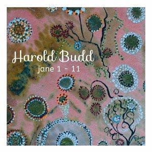 Harold Budd哈羅德巴德 環境(Ambient)氛圍,持續長音音樂(Drone music),前衛,新古典主義