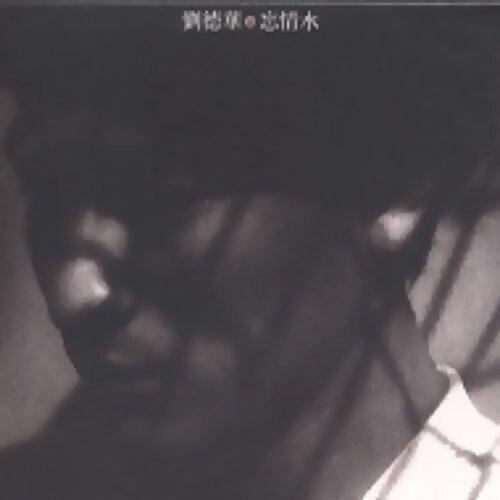 劉德華演唱會歌單