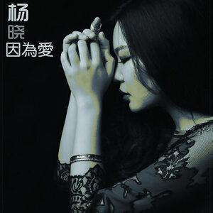 楊曉 - 因為愛