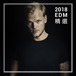 Best EDM Songs of 2018