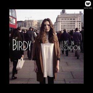 Birdy - Live In London
