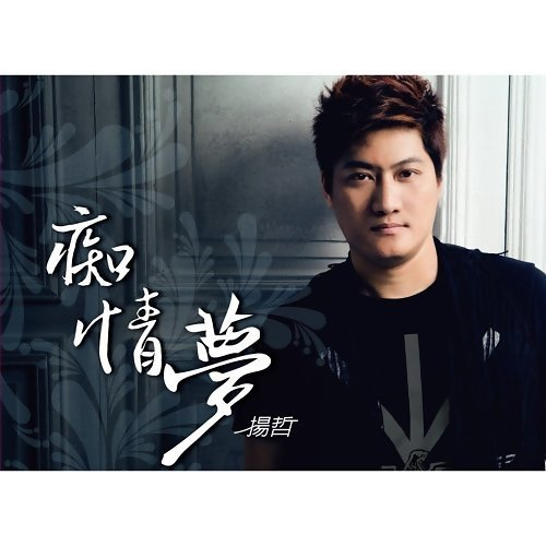 楊哲 歷年精選