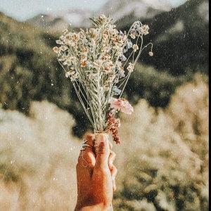 花草好時日