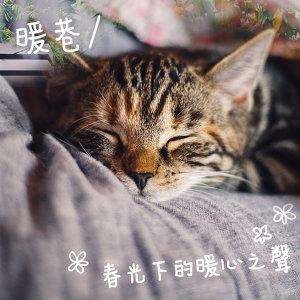 暖巷 / 春光下的暖心之聲 (3/20更新)