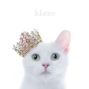 靈魂歌姬 Aimer 全收版