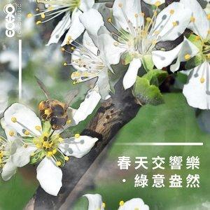 春天交響樂綠意盎然