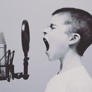 震耳欲聾的安靜-給在快節奏中尋求安靜的你