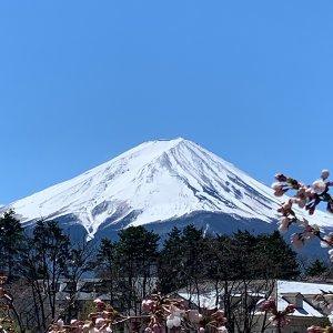 跟Fuji Fuji say個hi🗻