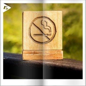 【健康必聽】森林系歌單,20首無菸城市音樂關心您