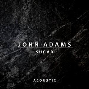 因為你聽過 Sugar - Acoustic
