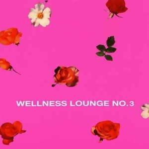 (沙發)德國舒適系電子音樂最佳廠牌 Electric Lounge,Wellness Lounge NO.3